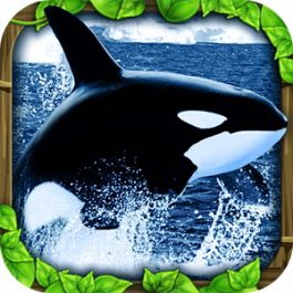 Orca Simulator 1.0.1 for Android +2.3