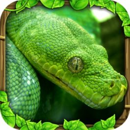 Snake Simulator 1.1 for Android +2.3
