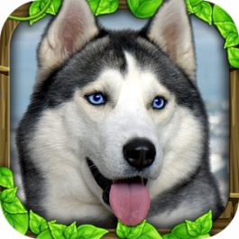Stray Dog Simulator 1.2 for Android +2.3