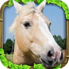 Wild Horse Simulator 1.0 for Android +2.3