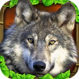 Wildlife Simulator Wolf 2.0.1 for Android +2.3
