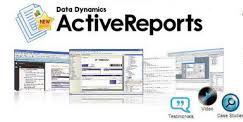 DataDynamics ActiveReports ActiveX 2.5.0.1322