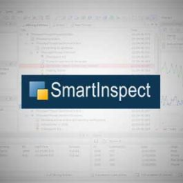 SmartInspect Professional 3.3.9.166 for Tokyo 10.2.2