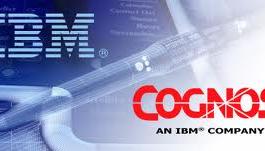 IBM Cognos BI 8.4