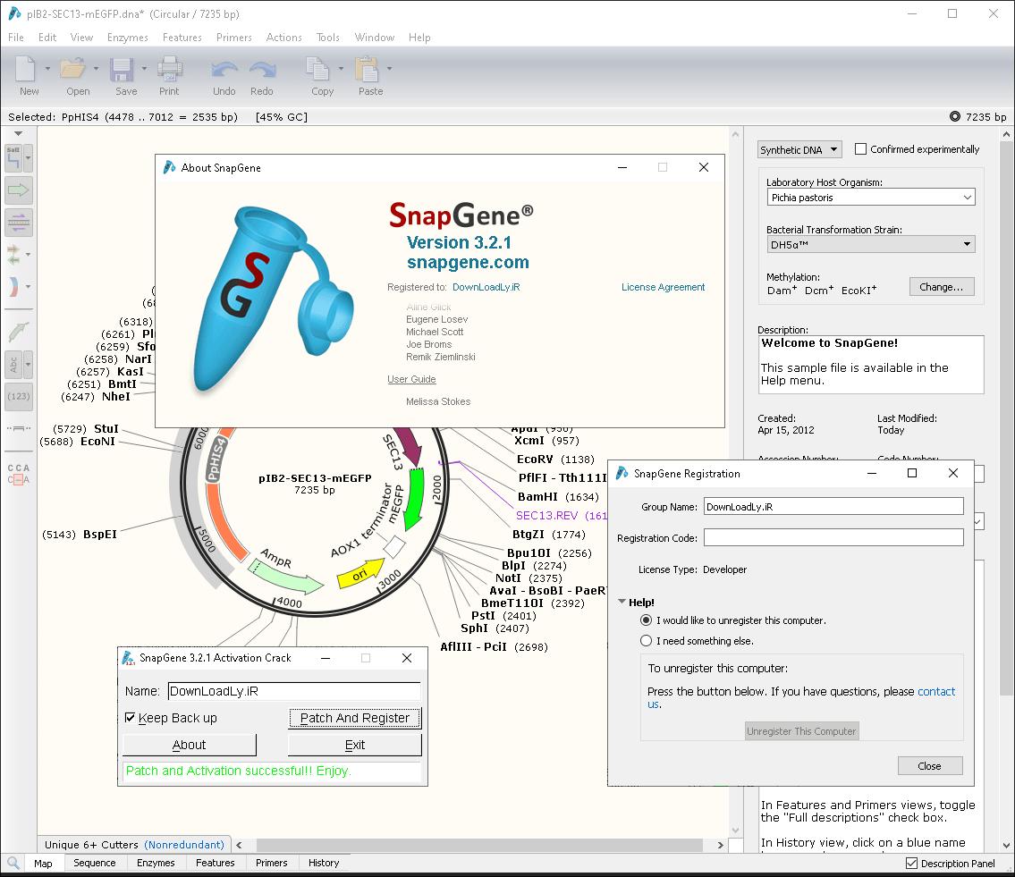 SnapGene screenshot