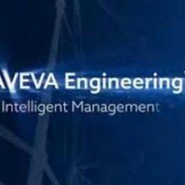 AVEVA Engineering 14.1 SP1