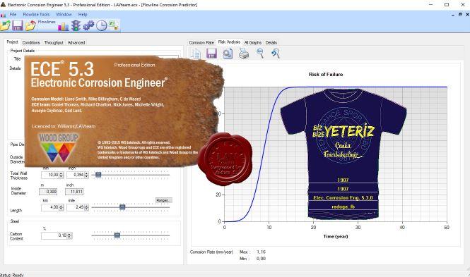 Electronic Corrosion Engineer