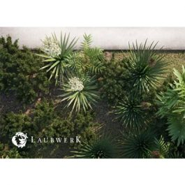 Laubwerk Plants Kit 4 v1.0.25 Windows/macOS