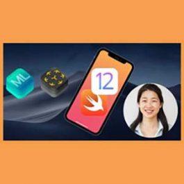 Udemy - iOS 12 & Swift - The Complete iOS App Development Bootcamp 2018-9