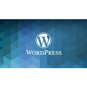 Udemy - The Complete WordPress Website Business Course 2018-8