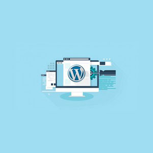 Udemy - WordPress Bootcamp for Beginners: Build Your Own Website 2018-9