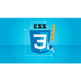 Udemy - CSS - The Complete Guide (incl. Flexbox, Grid & Sass) 2019-10