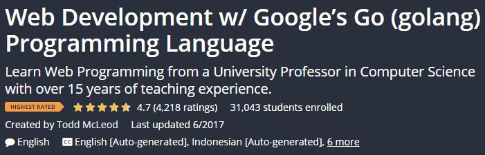 Web Development w / Google\'s Go (golang) Programming Language